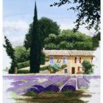 provence_aquarelles_3